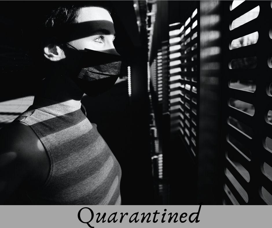 Quarantined Life 3
